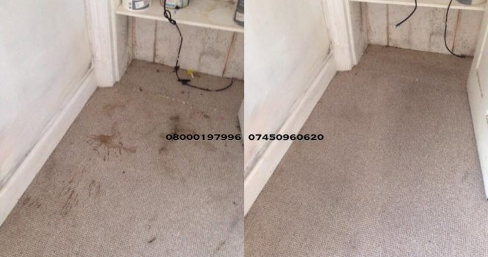 carpet cleaner alnwick