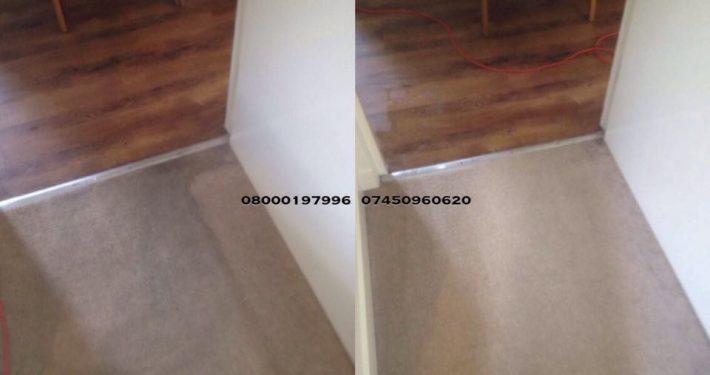 carpet cleaner dunbar