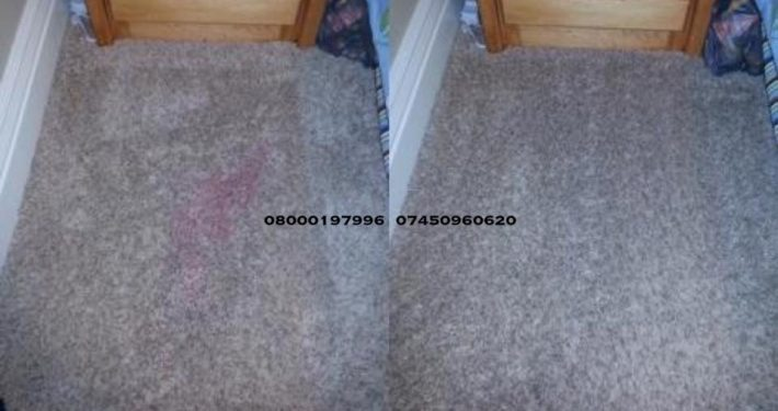 carpet cleaner earlston