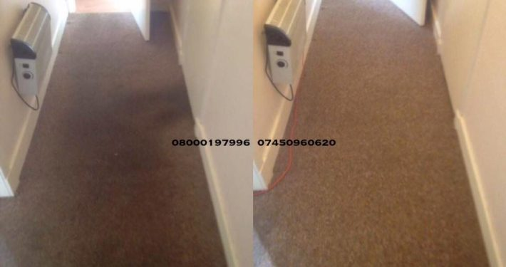 carpet cleaner loanhead