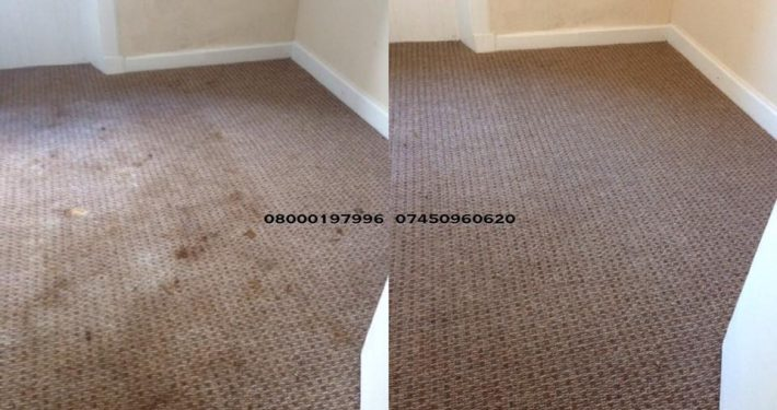 carpet cleaner moffat