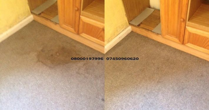 carpet cleaner ponteland