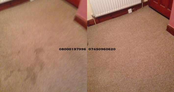 carpet cleaner roslin