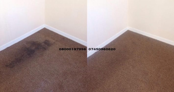 carpet cleaner td9