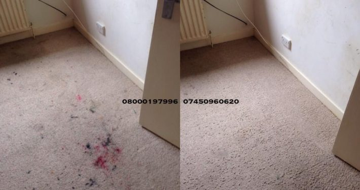 carpet cleaner tranent