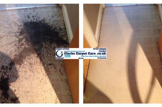 stain removal edinburgh