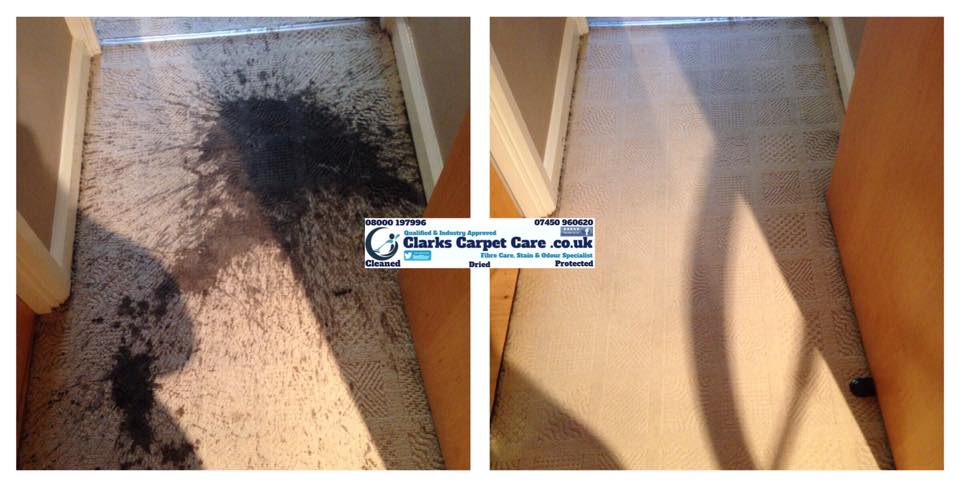 Carpet Cleaning Edinburgh