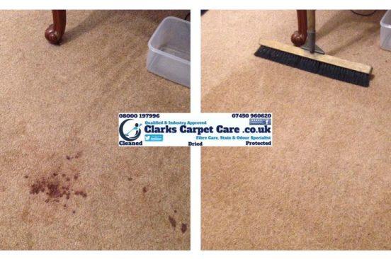 Blood in Carpet