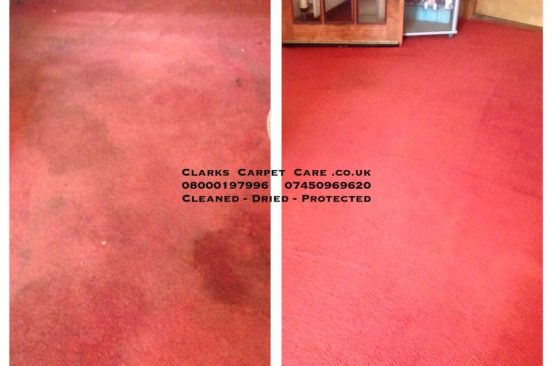 urine stained carpet