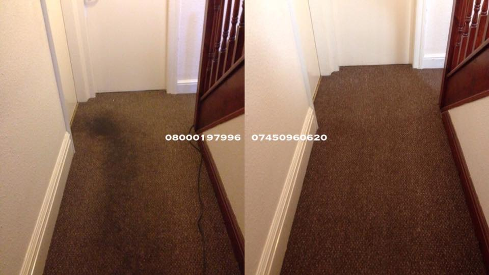 Common Area Carpet Cleaning Edinburgh