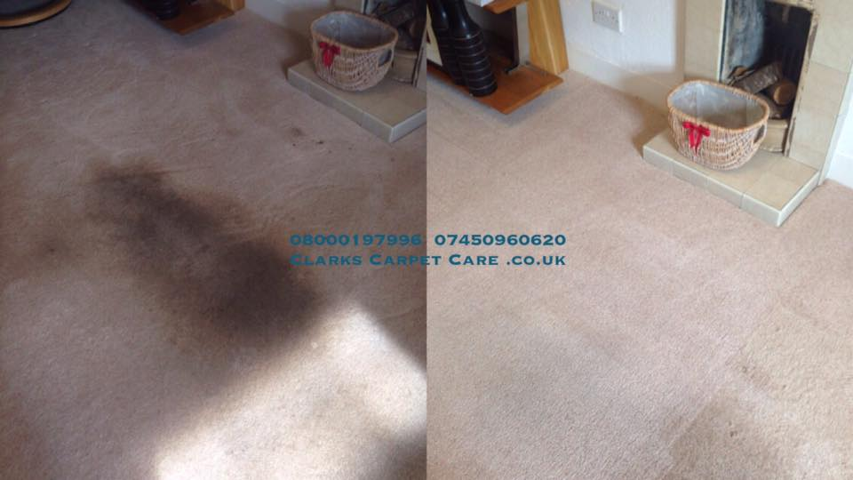 Edinburgh & Lothians Carpet Cleaning